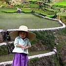RICE BABY - PHILIPPINES by Michael Sheridan