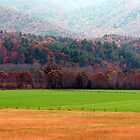 Cades Cove Pasture and Mountains by WTBird