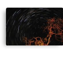 Star Trails ~ HDR Canvas Print