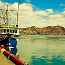 Harbour in St. John&#x27;s, NL. by RaceyTay