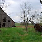 Abandoned Barn by Catherine Sherman