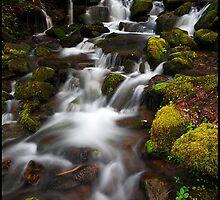 North Carolina Cascade, GSMNP by ThomasRBiggs