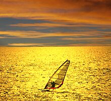 Sailboarding at sunset by robert murray