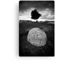 Black and White Egg Canvas Print