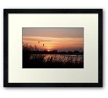 Sun Setting on a Louisiana Rice Field Framed Print