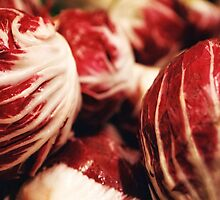 Radicchio by RobertCharles