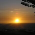 Cottesloe Sunset by Kate Harriman