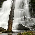 Dead Creek Falls by Stephen Beattie