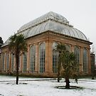 Temperate Palm House in Edinburgh's Botanic Gardens by laurawhitaker