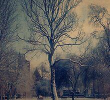 winter by jone vaitkute