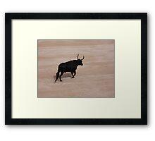 Bull in Arles Framed Print
