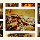 The Ringling Museum of Srasota Florida  by Isa Rodriguez