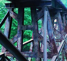 Train Trestle by Jennifer  Burgess