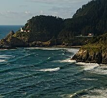 Heceta Head Light House by leannasreflections