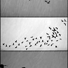 Ibis - Triptych by Kitsmumma