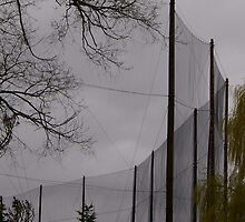 What are these? Solved by Stuart Thorpe~ GOLF Practice NETS after 57 comments and 120 views! by Larry Llewellyn