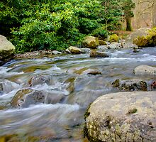 Aira- Force by Nigel Donald