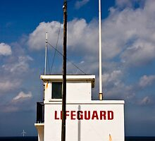 Lifeguard by Mark  Coward