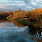 Boyne River by Martina Fagan