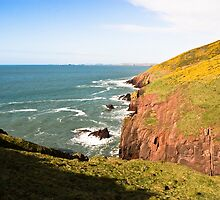 Wild Coast, Pembrokeshire by Paul Davey