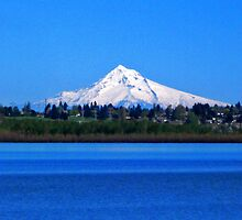 Mount Hood  by Fred Seghetti
