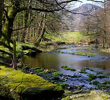 St John's Beck by mikebov