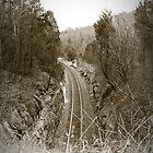 Cowan Railroad by Linda Curty