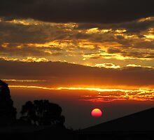 Pink Sun and Golden Clouds by David Hunt