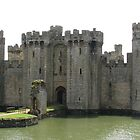 Bodiam Castle, East Sussex by Dawn OConnor