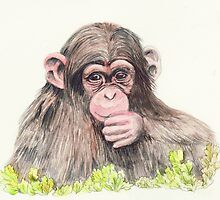 Chimp by morgansartworld