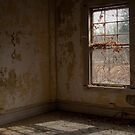 Through the lens by dreckenschill