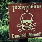 Danger Landmines by Caroline Fournier