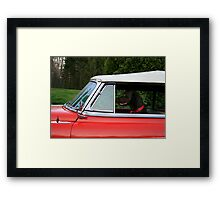 DOG GONE DRIVER Framed Print