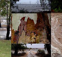 RAIN collage by binjy