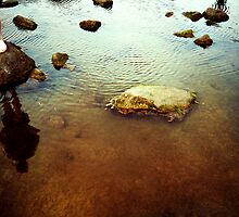 Rockpool Reflection by Paul Scrafton