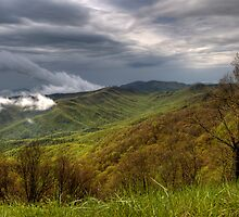 Spring Storm on the Blue Ridge  by Jane Best