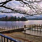Peaceful Lake~ by WJPhotography