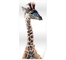 """Little Giraffe"" Wildlife Animal Watercolor Poster"
