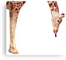 """Licker"" Giraffe Wildlife Animal Watercolor Canvas Print"