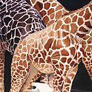"""Low Clearance"" Giraffe Wildlife Animal Watercolor by Paul Jackson"