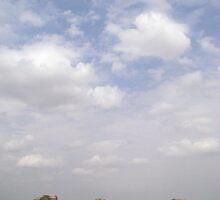 under the kenyan sky by karen peacock
