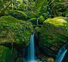 Go With the Flow - Katoomba Creek, NSW by Malcolm Katon