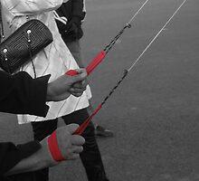 Professional kite flying by bfokke
