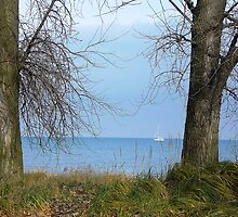 Lake Michigan seen from Highland Park by Arleen Colon
