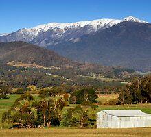 Mount Bogong by Darren Stones