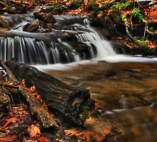 Wagner Falls Stream 1 by Chintsala