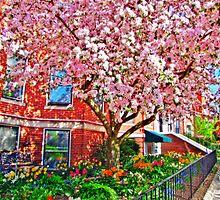 My lovely Garden by LudaNayvelt