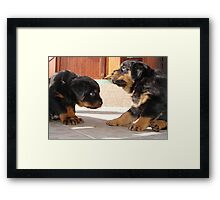 Your Majesty...... Framed Print