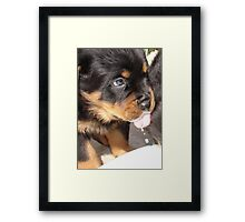 Milk Monitor Framed Print