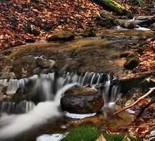 Wagner Falls Stream 3 by Chintsala